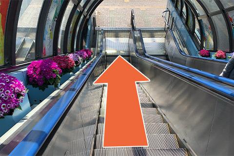 ②左の階段またはエスカレーターを下ります